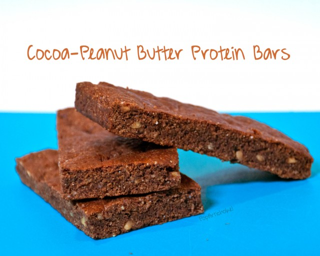 Post image for Cocoa-Peanut Butter Protein Bars (Vegan, Gluten-Free, Dairy-Free)